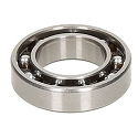 SIRIO .21 GT5 RR 2019 Rear Steel Bearing