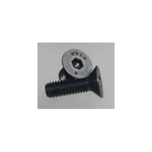 FLAT HEAD SCREW 2,5X8 (10PCS)